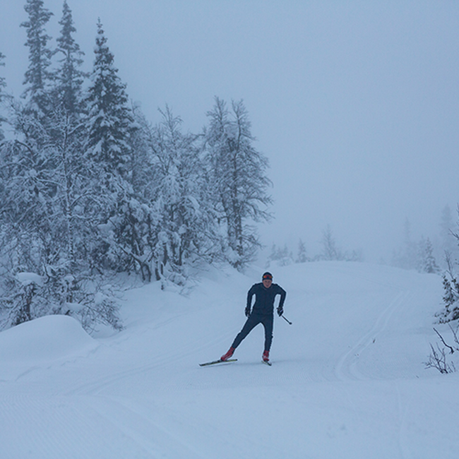 Ace skijakke herre